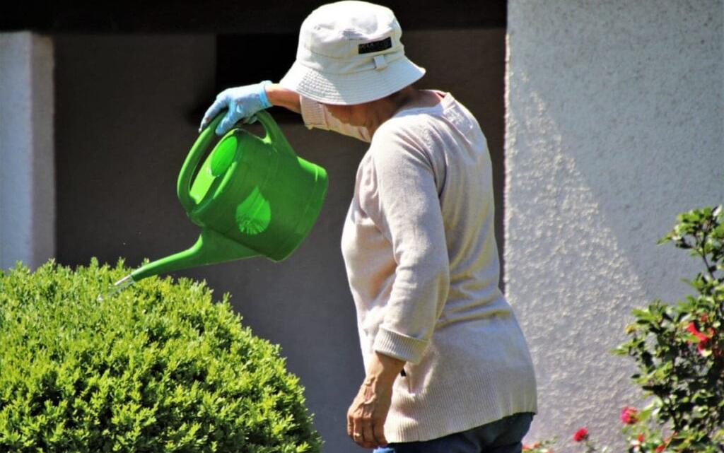 Klæd dig på til havearbejdet